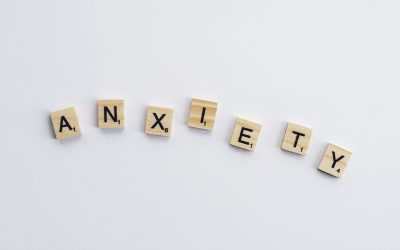 The Function of Anxiety